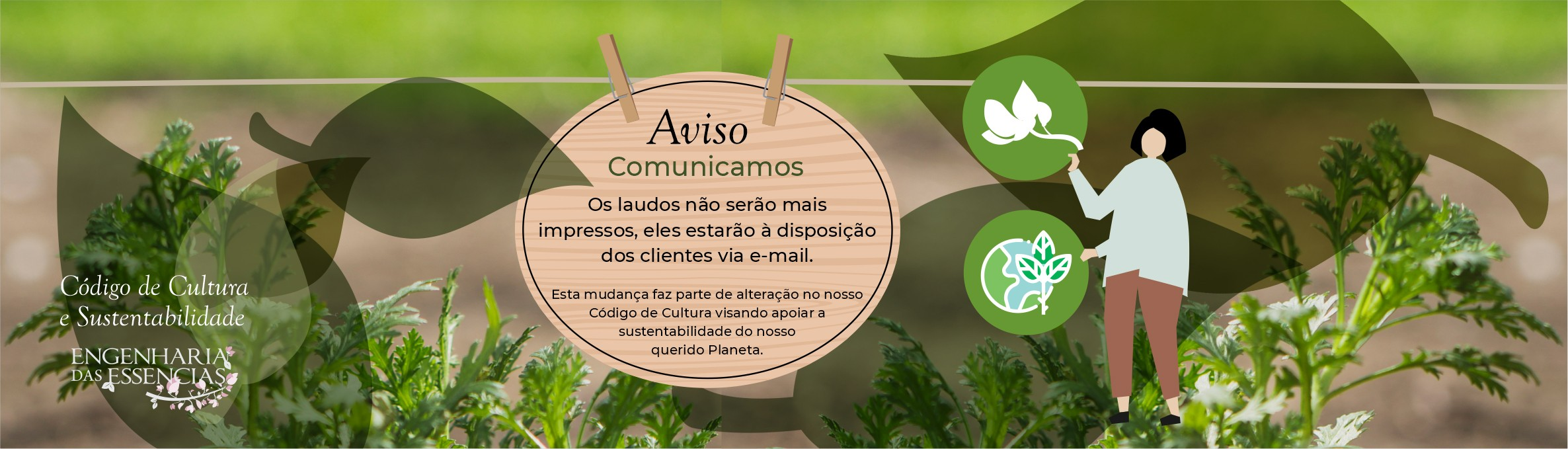 Comunicado Laudo on line